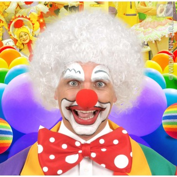 pruik, clown wit