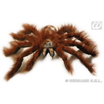 jumbo spinnen 60cm buigbaar