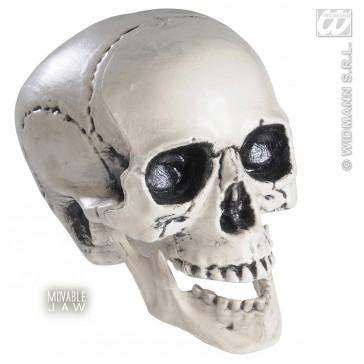 schedel met beweegbare kaak 25cm