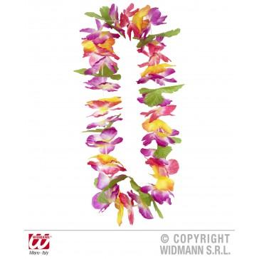 hawaii krans maui