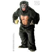 Gorilla aap king kong
