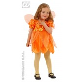 Oranje vlinder mini