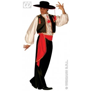 Item:Flamenco Danser