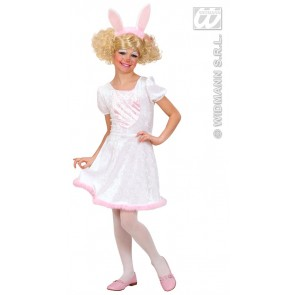 Item:Bunny